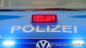 Fährhafen Puttgarden: Bundespolizei fasst flüchtigen Straftäter - fehmarn24.de