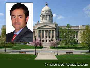 McCoy: House reviews legislation as conference committees begin work - Nelson County Gazette