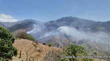 Incendios forestales en Chitagá y El Carmen dejan graves daños | La Opinión - La Opinión Cúcuta