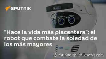 """""""Hace la vida más placentera"""": el robot que combate la soledad de los más mayores - Sputnik Mundo"""