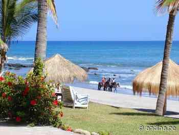 ¡Recuerda! Si vas a Máncora u otras playas autorizadas no olvides el protocolo sanitario - Agencia Andina