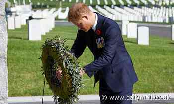 Queen's Remembrance Day wreath rejection 'wounded' Prince Harry