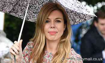 When ANNE McELVOY began working on a profile of Carrie Symonds, her PR machine whirred into life