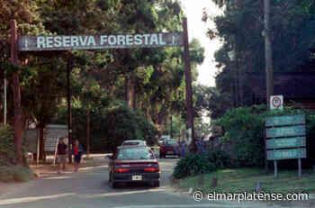 Vecinos de Mogotes, Faro Norte, Colinas, Jardín y el Bosque denunciaron que - El Marplatense