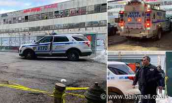 Homeless woman, 19, found dead and wrapped in plastic in abandoned fish market in Manhattan