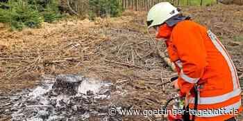 Waldbrand an der Bundesstraße bei Hardegsen: Feuerwehr verhindert Schlimmeres - Göttinger Tageblatt