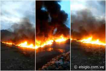 Incendio devoró una recicladora de botellas plásticas en Mariara - Diario El Siglo