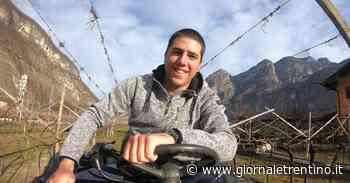 Mezzolombardo, Davide Caset lascia l'informatica per la campagna - Trentino