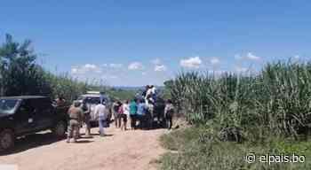 Arrestan a 14 personas que cruzaron la frontera en Bermejo-Tarija - El País