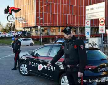 Topi e sporcizia: chiuso negozio di alimentari a San Dona' di Piave - Notizie Plus