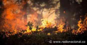 Incendio arrasa con el páramo de Cumbal en Nariño - http://www.radionacional.co/