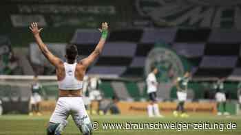 Copa do Brasil: Palmeiras holt den brasilianischen Pokal