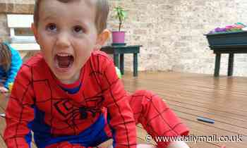 William Tyrrell's foster grandmother dies six years after he vanished from her home