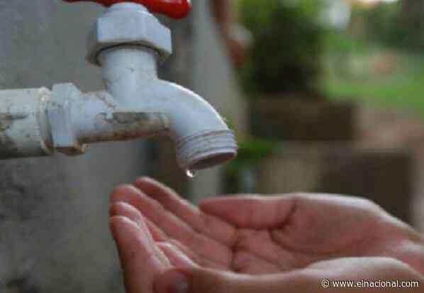 La cepa de Brasil y sin agua