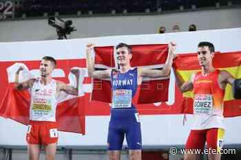 Recalificado Ingebrigtsen; Lewandowski plata, Gómez bronce en 1.500 | Deportes - Agencia EFE