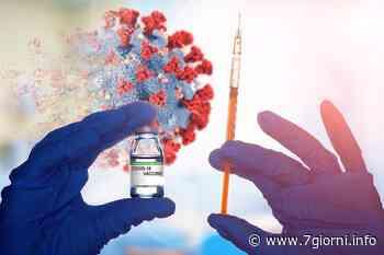 Vaccini over 80: a Tribiano la Protezione Civile avvia una campagna informativa porta a porta - 7giorni