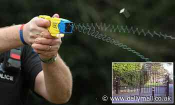 Police Taser girl aged 10 'threatening mother' in private gated estate