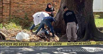 Sucesos Hallan cadáver de un hombre en San Luis Talpa, La Paz - Solo Noticias