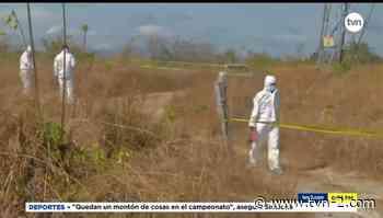 Hallan un cadáver calcinado en San Carlos - TVN Panamá