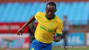 Mamelodi Sundowns striker Shalulile, McCarthy win PSL awards