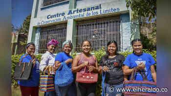 Mujeres sin 'límites' que tejen bolsos reciclables en Luruaco - EL HERALDO