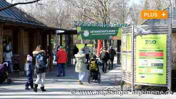 Der Augsburger Zoo hat wieder offen: Besondere Regeln für Besucher