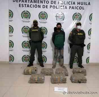 Capturado con 33 kilos de marihuana en la vía Paicol – Neiva - Diario del Huila