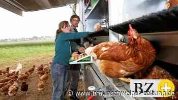 Vogelgrippe: Wolfsburger Geflügel muss vorsorglich in die Ställe