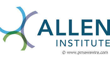 Allen Institute Launches Fellowship for Data Scientists to Study the Brain