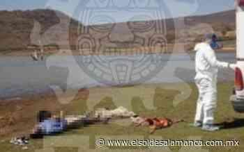 Muere ahogado penjamense en presa Mariano Abasolo - El Sol de Salamanca