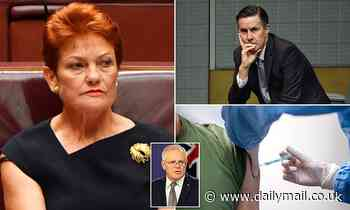 Pauline Hanson reveals she will refuse Covid-19 vaccine and has questioned Australia's death toll