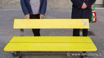 A San Giuliano Terme inaugurata la panchina gialla per la Festa della donna - LA NAZIONE