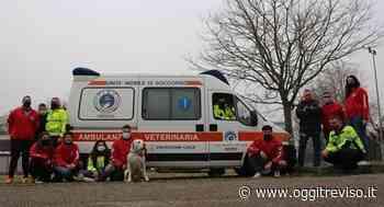 L'associazione FISA con sede a Mogliano Veneto presto avrà un'ambulanza veterinaria - Oggi Treviso