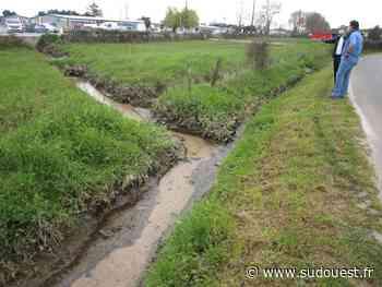 Cadaujac : la Ville entend mettre fin au casse-tête des inondations par un travail en commun - Sud Ouest