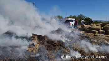 Arde remolque con pacas de frijol por la carretera Guamuchil-Mocorito - Linea Directa