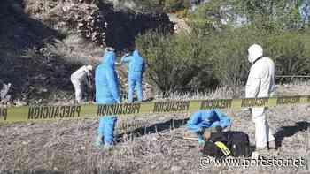 Hallan restos de exfuncionaria desaparecida en Nogales, Sonora - PorEsto