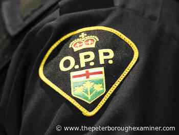 Campbellford teen facing charges after vehicle fled from Peterborough County OPP - ThePeterboroughExaminer.com