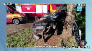 Palmitos: Mulher fica ferida depois de bater carro em árvore - ND Mais