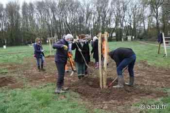 A Basse-Goulaine, un arbre planté pour chaque naissance - actu.fr
