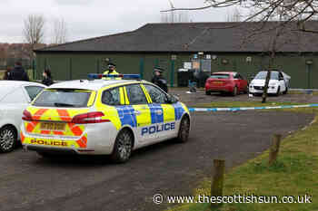 Teenager, 19, charged over double 'murder bid' stabbings at Glasgow's Greenfield Park football pitch - The Scottish Sun