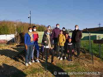 À Canteleu, près de Rouen, les habitants du quartier Bapeaume cultivent leur jardin - Paris-Normandie