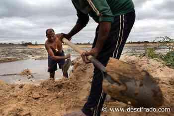 En Maripa reclaman contra la extracción minera en el Caura - Descifrado.com