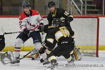 Cole Harbour's Hinam brings championship pedigree to Acadia - TheChronicleHerald.ca