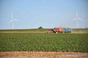 Le futur parc éolien de Neuville-aux-Bois et Aschères-le-Marché fait débat - Neuville-aux-Bois (45170) - La République du Centre