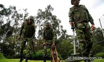 Ejército empezará desminado en Murindó, Antioquia - 360 Radio - 360radio.com.co