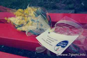 A Peschiera, Paullo e Tribiano, fiori per le donne in occasione dell'8 marzo - 7giorni