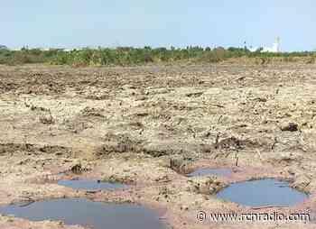 Pescadores reportan afectaciones por contaminación en la Ciénaga El Convento, en Sabanagrande (Atlántico) - RCN Radio