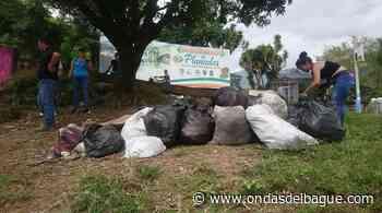 Habitantes de Planadas adelantaron jornada de limpieza y recolección de residuos sólidos - Ondas de Ibagué