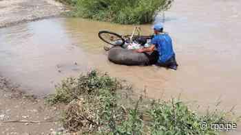 Lambayeque: Cruzan el río Zaña con cámaras de llantas y arriesgan su vida [Video] - RPP Noticias