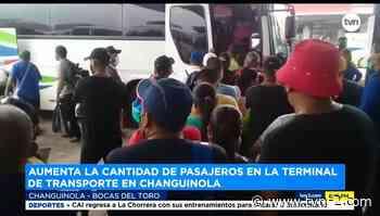 Autoridades preocupadas por aglomeración en terminal en Changuinola - TVN Panamá